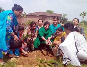 BJPMM carries out massive plantation drive